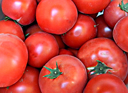 red-tomatoes3