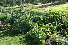 big-garden